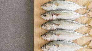 Blue fish: Types and Benefits