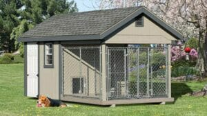 Pet House Design