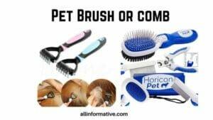 Brush or comb