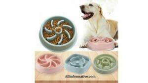 Pet's Bowls